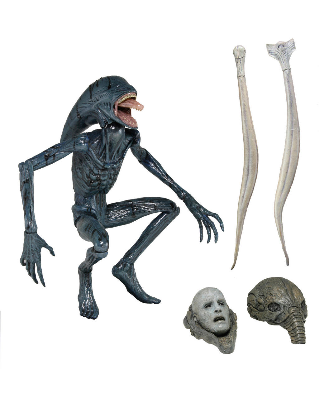 Behind the Scenes First Look – David 8 from Prometheus ...Xenomorph Queen Prometheus