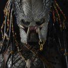 51492-Predator-Elder-3