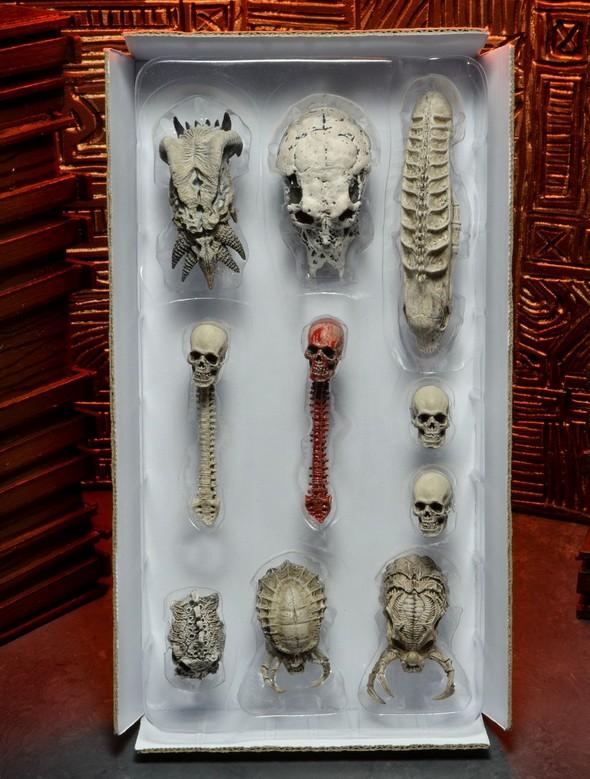 51497-Predator-SkullPack-1a