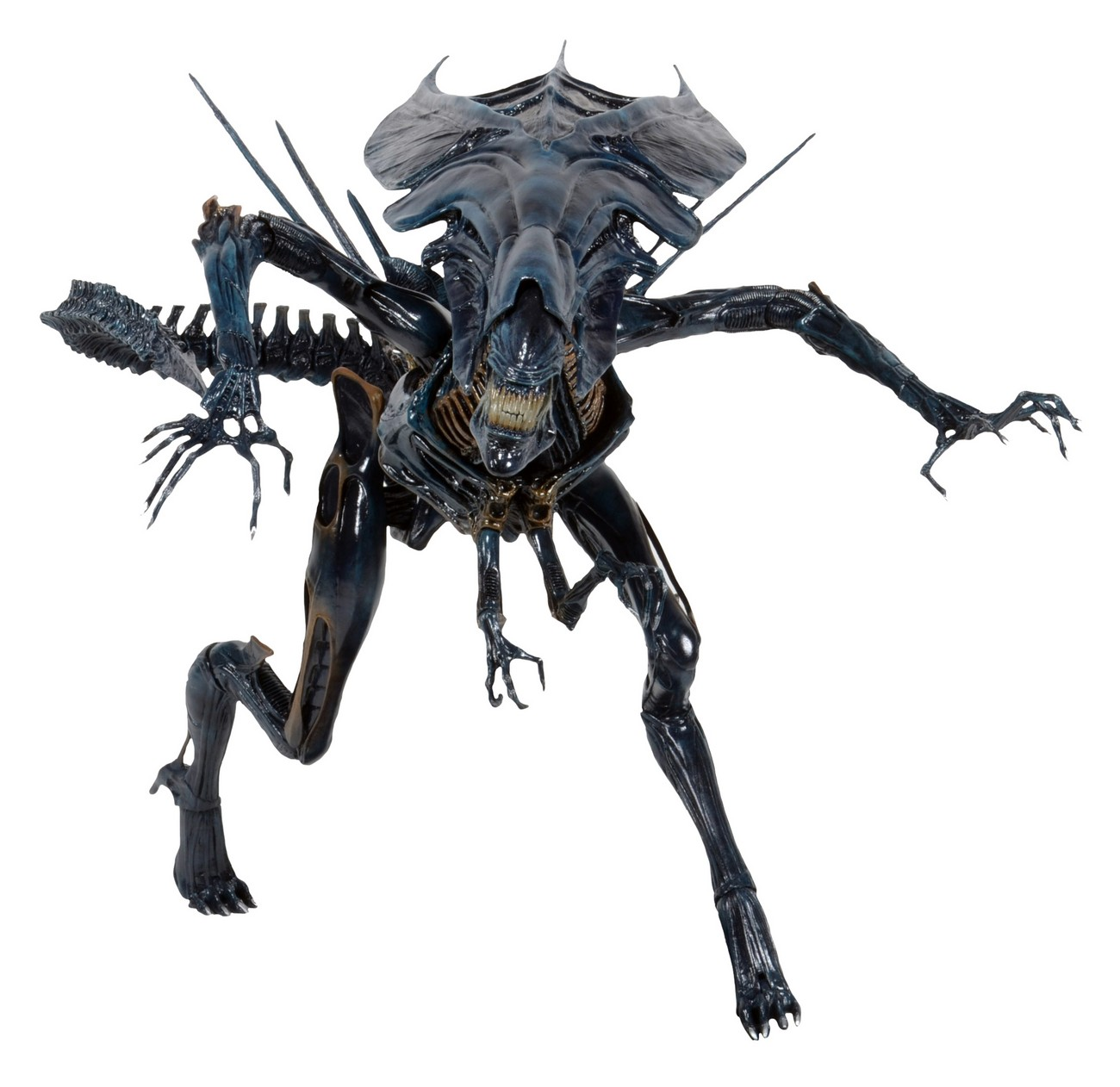 how big is a predator drone with Aliens Xenomorph Queen Ultra Deluxe Boxed Action Figure on Predator Drone By Joe Linux 174871 besides SB125107420171052683 also General Atomics Avenger The Future Of Affordable Ucavs further Engine Support Fixture as well Poweregg Parrot Consumer Market.