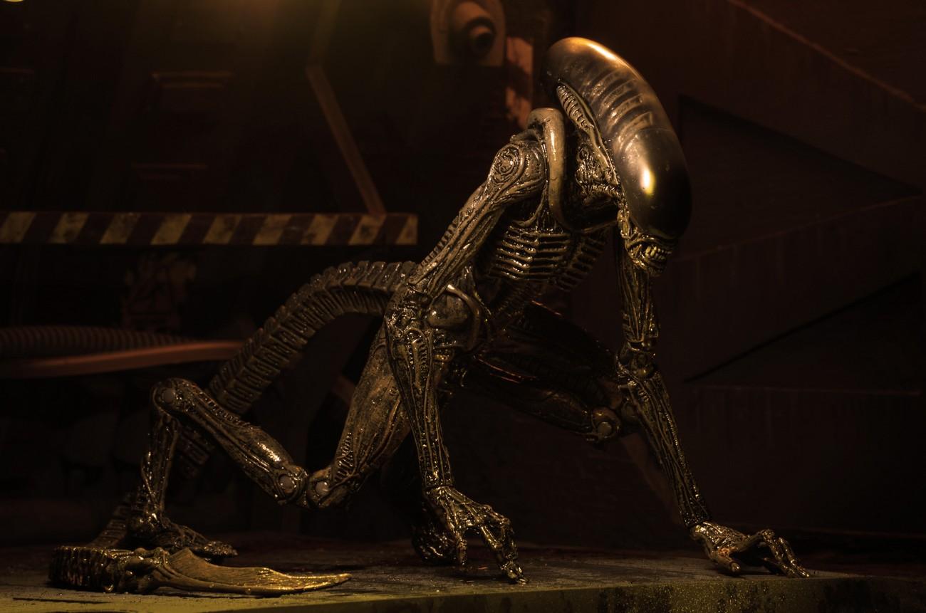 alien - photo #19