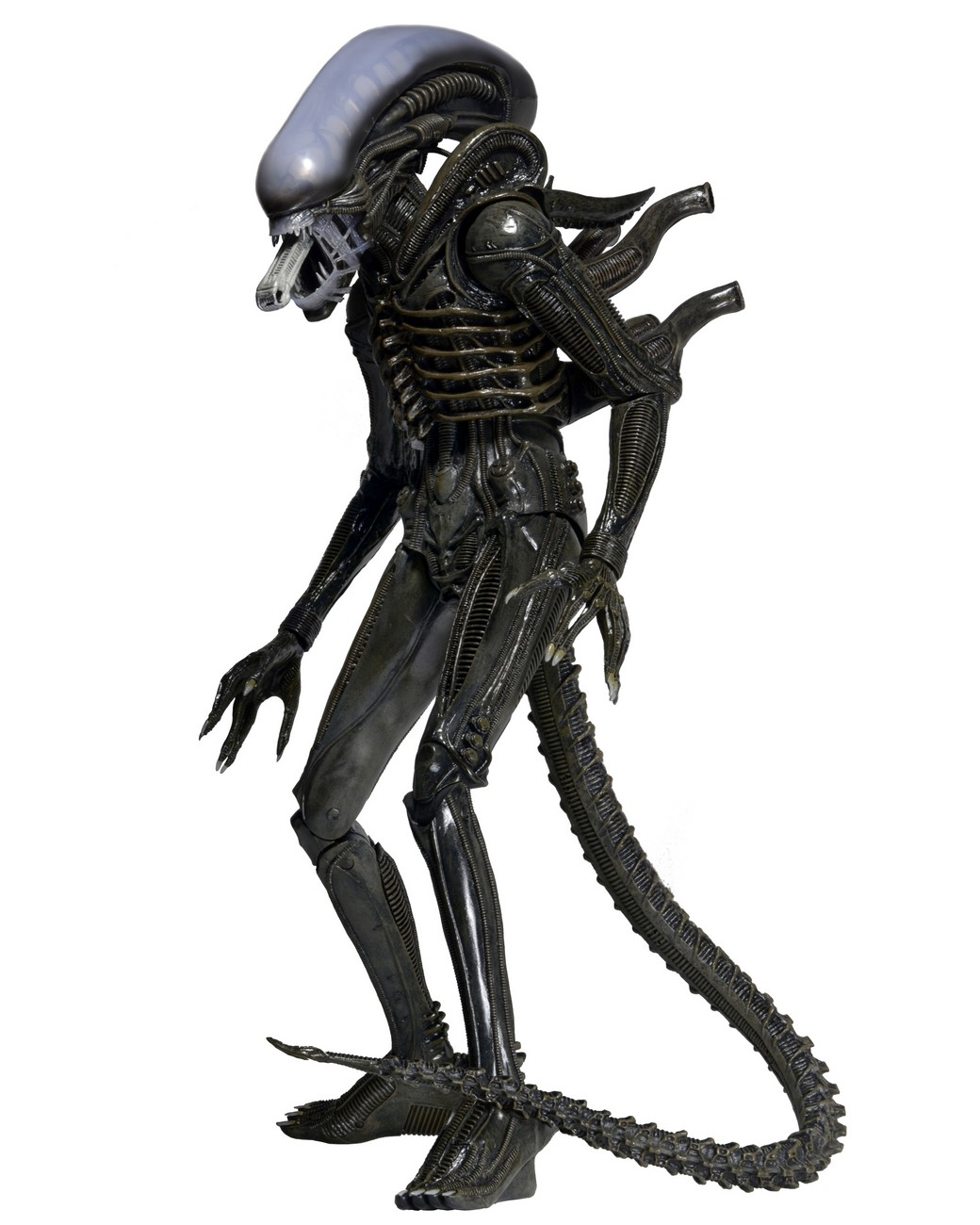 PrevNext  sc 1 st  Neca & Closer Look: 1979 Alien 1/4 Scale Action Figure | NECAOnline.com