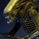 1300x Alien6