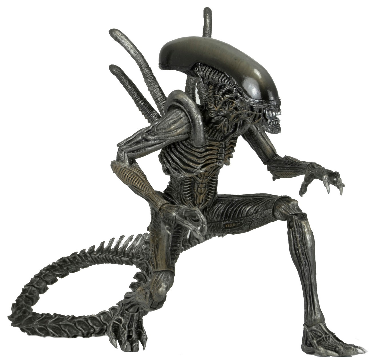 DISCONTINUED – Aliens – 7″ Scale Action Figures – Series 7 Assortment | NECAOnline.com