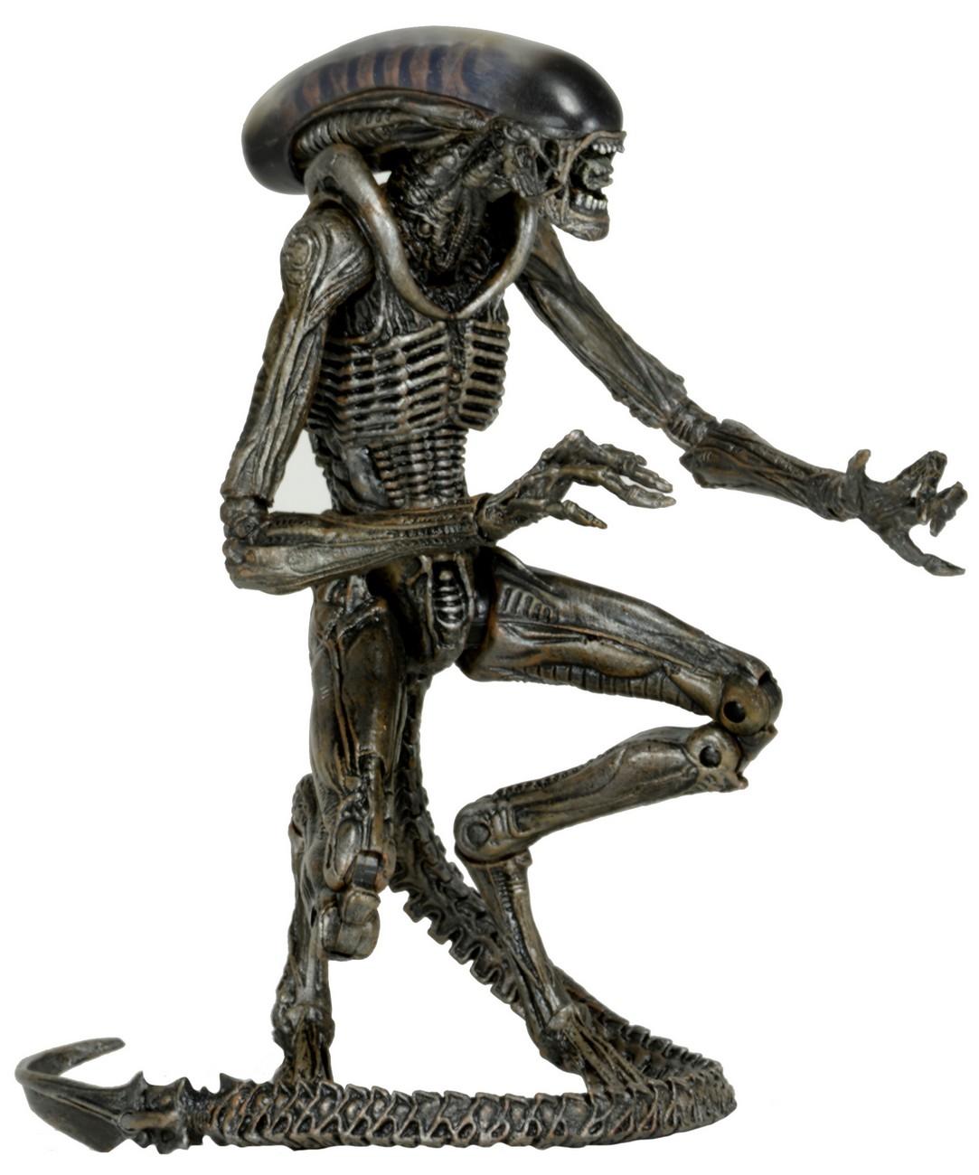 Grid Drawing Online Aliens 7 Quot Scale Action Figures Series 8 Necaonline Com