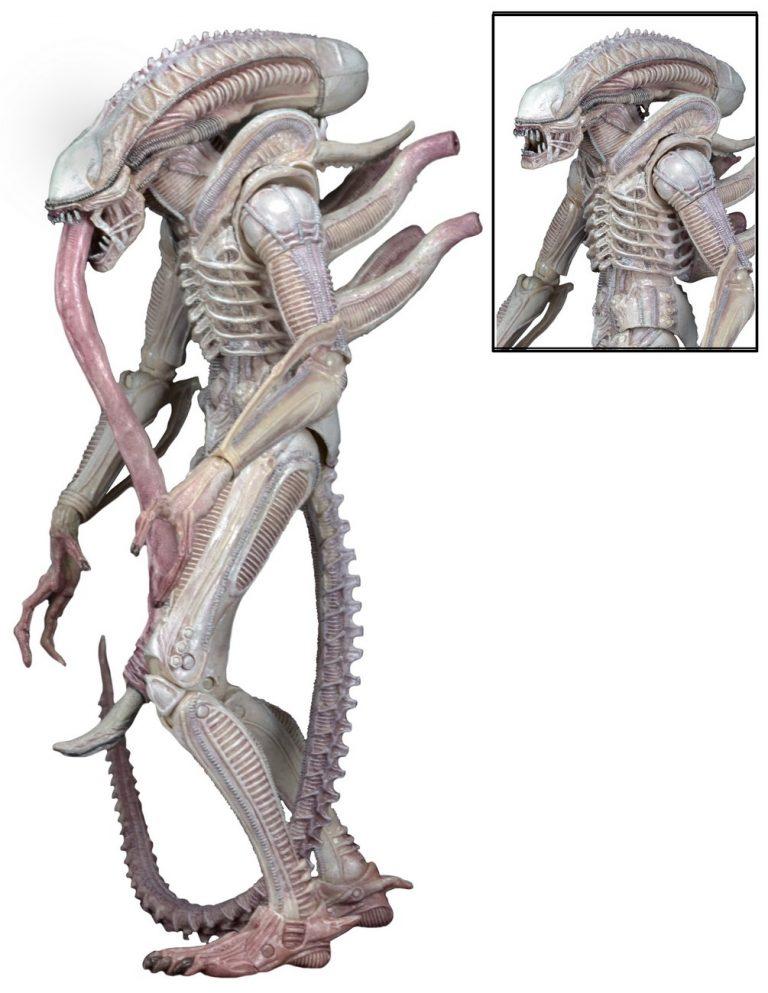 alien - photo #16