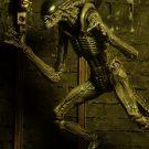 1300x Alien2