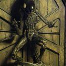 1300x Alien3