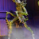 1200x-mantis12