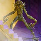 1200x-mantis14