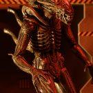 51635-aliens-s11-defiance-alien3