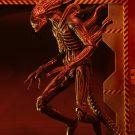 51635-aliens-s11-defiance-alien5
