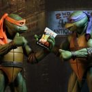 54054-tmnt-mikey_9