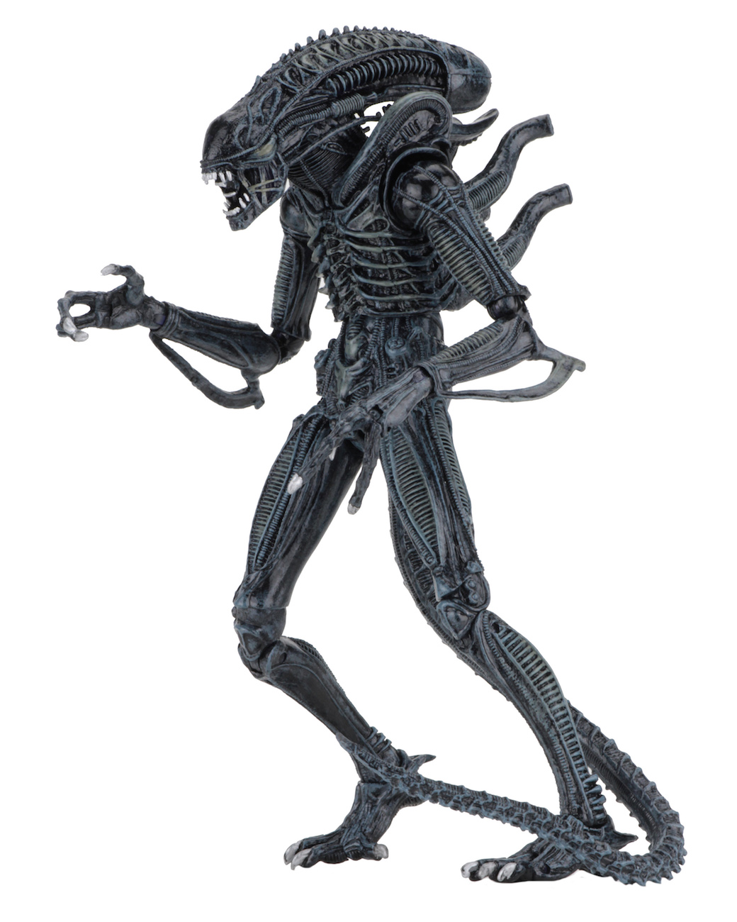Aliens Blue Warrior Alien Xenomorph Action Figure Neca New