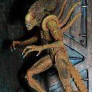 sewer-alien11