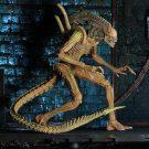 sewer-alien2