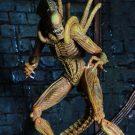 sewer-alien4