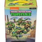 tmnt-collectors-case5