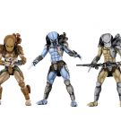 51686-predator-group1
