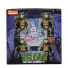 54064-baby-turtles-pkg5