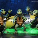 54064-baby-turtles2