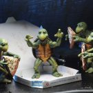 54064-baby-turtles4