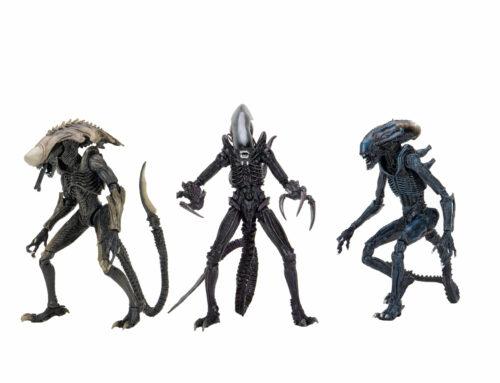 Alien Vs Predator – 7″ Scale Action Figure – Alien Assortment (Movie Deco)