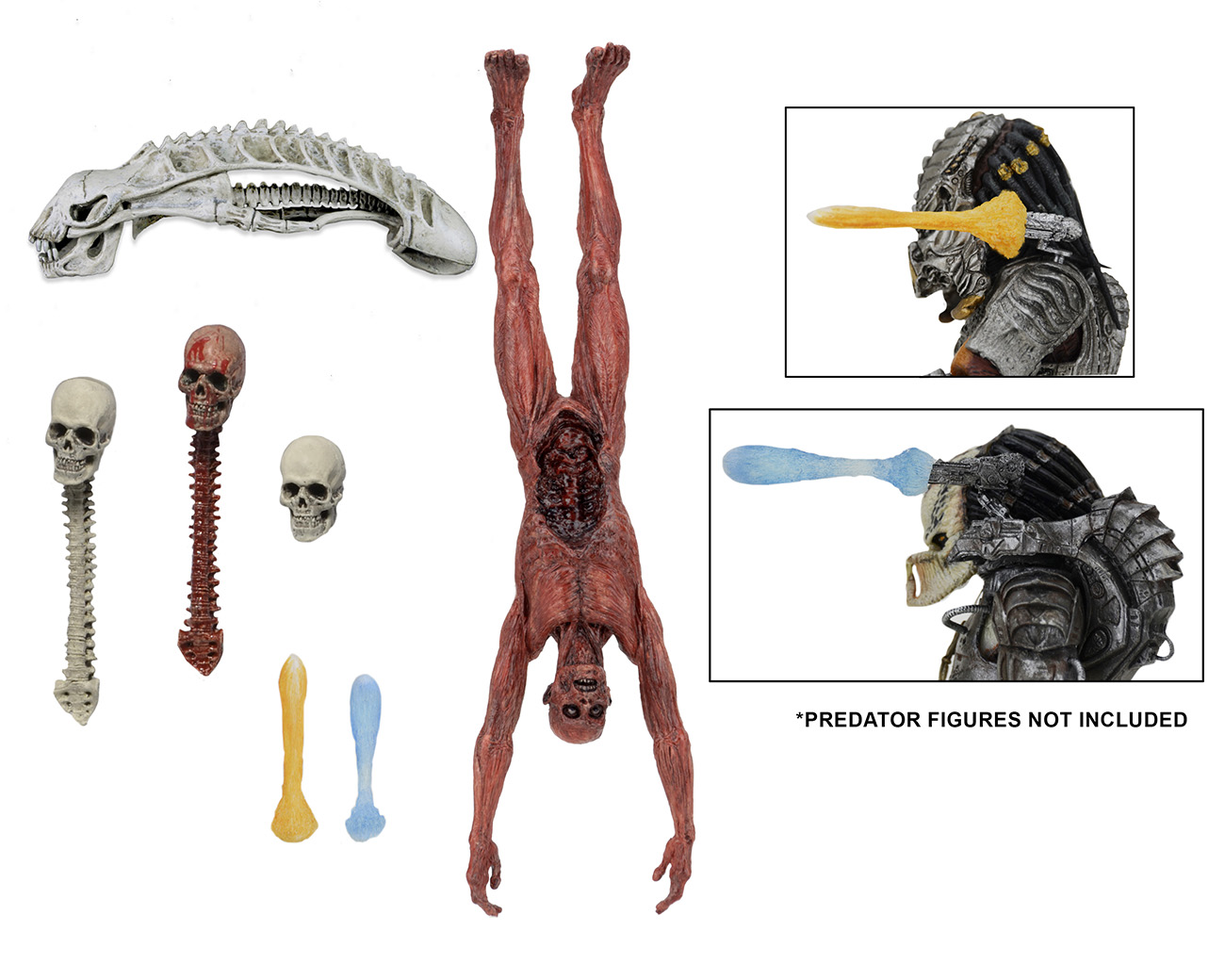 DISCONTINUED – Predator – Deluxe Accessory Pack