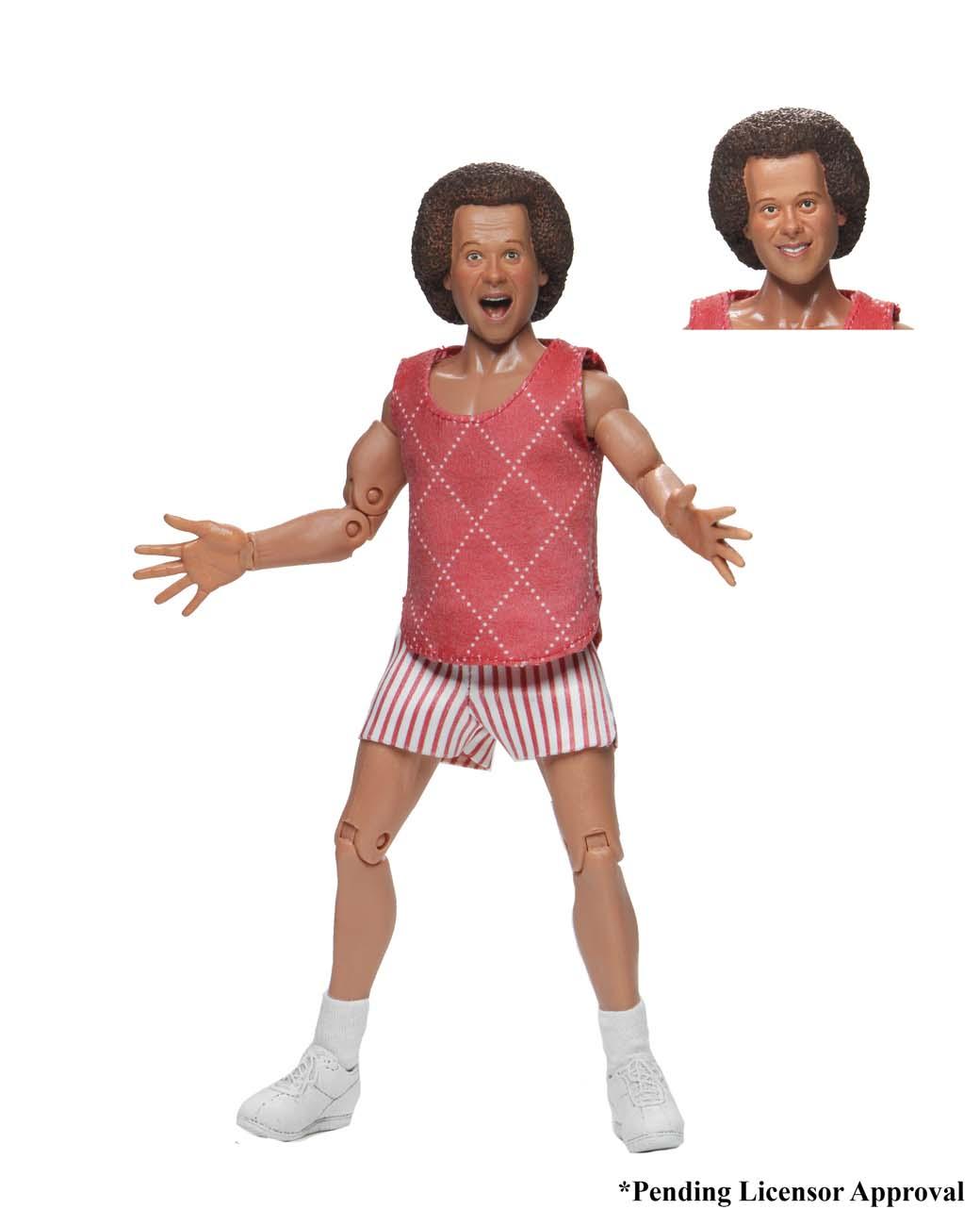 "Richard Simmons Richard Simmons NECA 8/"" Clothed Action Figure"
