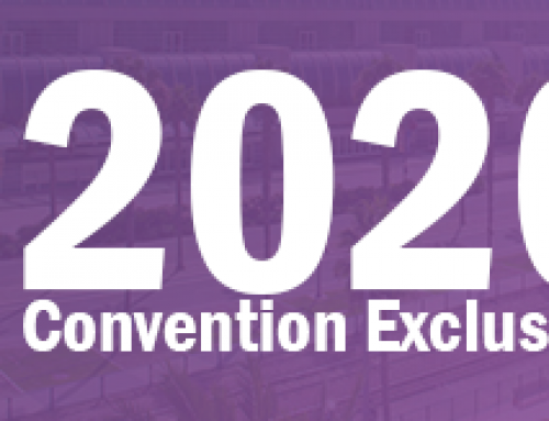 2020 Convention Exclusives: Complete Roundup and Sales Details